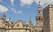 Cathedral, Giralda And Alcazar Wall.