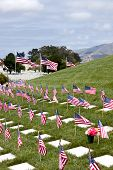 foto of headstones  - Headstones and American Flags at National Military Cemetery