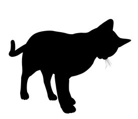 pic of black cat  - Black cat art illustration silhouette on a white background - JPG