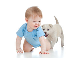 pic of crawl  - cute baby playing and crawling away a puppy - JPG