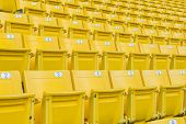 stock photo of grandstand  - The Empty Chair at Grandstand - JPG