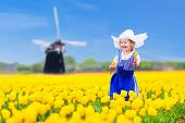 picture of traditional dress  - Adorable curly toddler girl wearing Dutch traditional national costume dress and hat playing in a field of blooming tulips next to a windmill in Amsterdam region Holland Netherlands - JPG