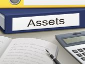 picture of asset  - assets binders isolated on the office table - JPG