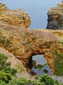 picture of grotto  - The grotto is a sinkhole geological formation in Victoria in Australia - JPG