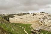 stock photo of gethsemane  - Kidron Valley - JPG