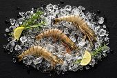 picture of tiger prawn  - Fresh tiger shrimp on ice on a black stone table top view - JPG