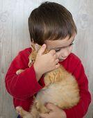 foto of kitty  - Portrait of child holding yellow kitty cat - JPG