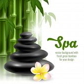 stock photo of frangipani  - Vector card on spa theme with bamboo - JPG