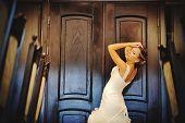 pic of tiara  - bride with tiara pose at the restauraunt - JPG