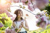 image of japan girl  - Smiling little brunette girl looking forward with japanese parasol in pink cherry blossom in daylight in the garden copyspace horizontal picture - JPG