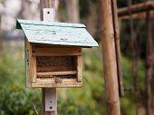 stock photo of feeding  - A birdhouse in the park full of feed for birds - JPG
