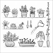 pic of plant pot  - Pot plants and tools sketch - JPG