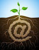 picture of bine  - Concept of germination roots and tuber in form of mail symbol - JPG