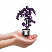 image of presenting  - Hands presenting against empty light bulb - JPG