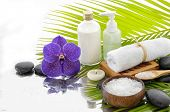 foto of palm  - Spa Background with green palm with spa set  - JPG