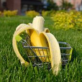 image of grocery cart  - mini shopping cart with banana outdoor in green grass - JPG