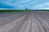 pic of plow  - Plowed field landscape in calm polish countryside - JPG