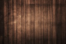 pic of wood  - texture of bark wood use as natural background - JPG