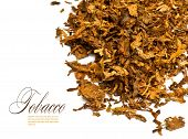 picture of tobacco leaf  - Cut and dried different sorts  - JPG