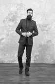 Elegant Man With Beard. Modern Life. Male Elegant Fashion Model. Mature Elegant Businessman Walking. poster