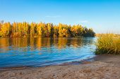 River Side. Autumn Nature Landscape. Scenic Riverside And Yellow Trees. River Shore. Calm Evening On poster