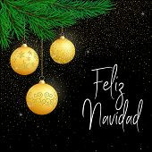 Vector Poster Merry Christmas, In Spanish Language- Feliz Navidad. Christmas Typography Card With Go poster
