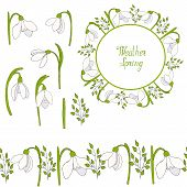 Set Of Flowers Snowdrops, Greeting Card And Seamless Brush. Card Template Vector Hand Draw Illustrat poster