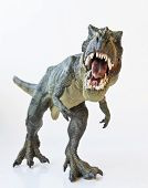 stock photo of animal teeth  - A Tyrannosaurus Rex Hunts Against a White Background - JPG