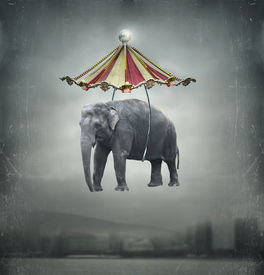 stock photo of circus tent  - Fantasy image that represent a flying elephant with circus tent in the sky and landscape on the background - JPG