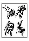 picture of judo  - Vector illustration - JPG