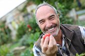 Cheerful senior man showing tomatoes from garden