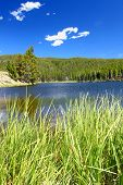 Sibley Lake Bighorn National Forest