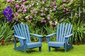 picture of lawn chair  - A pair of wooden Adirondack chairs in the summer garden - JPG