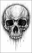 stock photo of skull cross bones  - Skull traditional ballpoint pen drawing - JPG