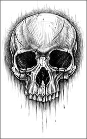 pic of skull cross bones  - Skull traditional ballpoint pen drawing - JPG