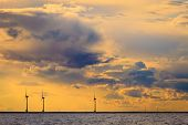 picture of turbines  - wind turbines power generator farm for renewable energy production along coast baltic sea near Denmark at sunset or sunrise - JPG