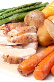 picture of turkey dinner  - roast turkey dinner with seasonal vegetables for a family holiday meal - JPG