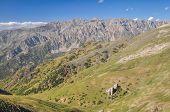 foto of shan  - Scenic mountain range Tien - JPG