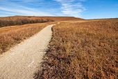 picture of tallgrass  - Konza Prairie is an 8600 - JPG