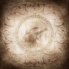 pic of celtic  - Eagle head enclosed within a corroded ring of mysterious carved runic symbols set against a background of intricate circular Celtic style patterns - JPG