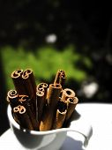 image of cinnamon sticks  - Stack of cinnamon sticks in a coffee cup with a nature background - JPG