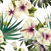 stock photo of hibiscus  - Beautiful vector pattern with nice watercolor hibiscus - JPG