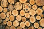 image of neat  - looking at a neat stack of fire logs - JPG