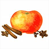 stock photo of cinnamon sticks  - orange - JPG