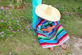Постер, плакат: Мексиканские ленивый типичный Сомбреро шляпу человек пончо с НПД в саду