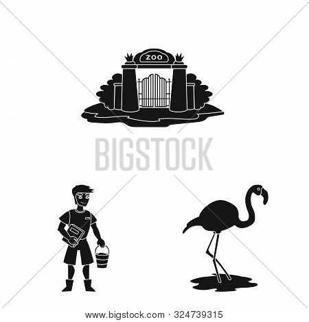 poster of Vector Illustration Of Fauna And Entertainment Sign. Set Of Fauna And Park Vector Icon For Stock.