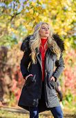 Girl In Warm Coat Stand In Park Nature Background Defocused. Create Fall Outfit To Feel Comfortable  poster