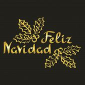 Feliz Navidad. Merry Christmas Phrase In Spanish. Hand Drawn Lettering, poster