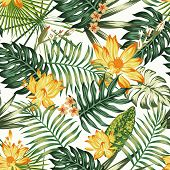 Flowers Lily, Lotus, Plumeria, Frangipani In Artistic Orange Color And Green Tropic Leaves. Summer H poster