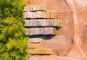 Lumber industry from above. Deforestation and biomass production as a cause of destroyed rainforests poster
